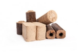 different kind of firewood briquettes, white background, isolated,