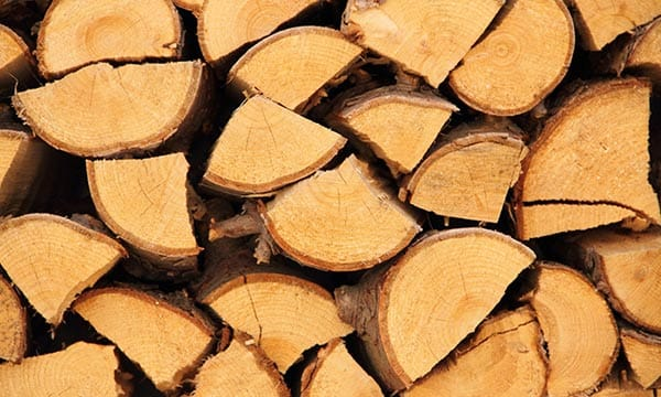 Brennholz und Kaminholz günstig kaufen in Frankfurt